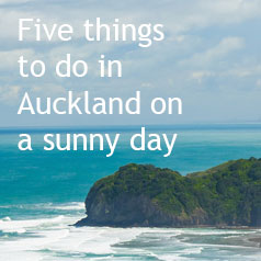 5-things-to-do-in-auckland-on-a-sunny-day-1