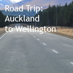 Auckland-to-wellington-road-trip
