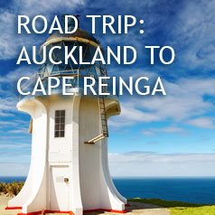 AUCKLAND-TO-CAPE-REINGA