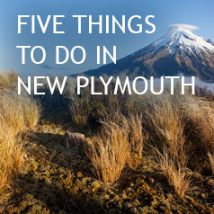 NEW-PLYMOUTH