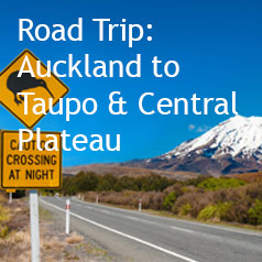 auckland-to-taupo-and-central-plateau---road-trip