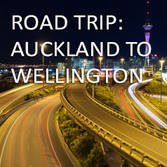 auckland-to-wellington-by-car-2019