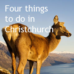four-things-to-do-in-christchurch