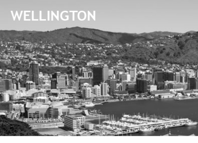 Wellington Car Hire1-260